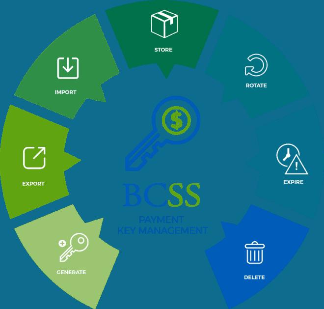 BCSS-lifecyce-chart